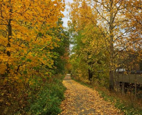 Foto av Linna i Askim